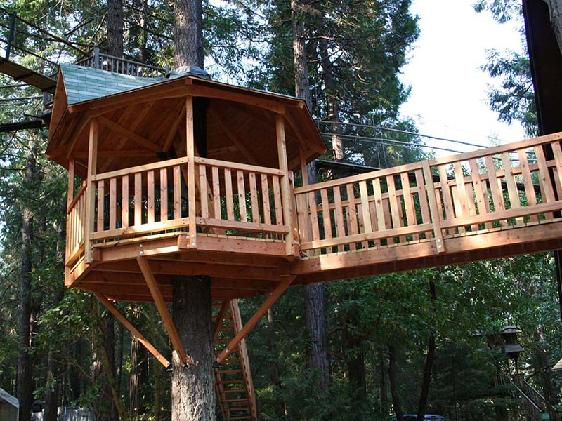 Photo: Out 'n' About Treehouse Treesort